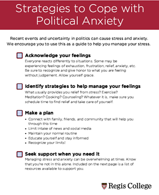 Political Anxiety Guide-1